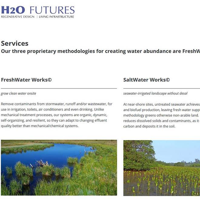 H2O Futures Website