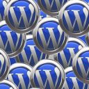 Image of WordPress Logos